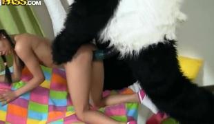 Hot teen Lerok horny fun time with panda
